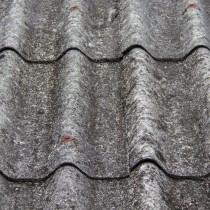 Roof Image for Moldy Roof Article