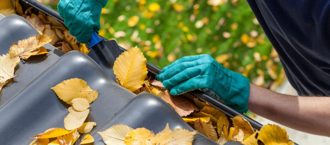 Gutter Guard Keeps Your Gutters Leaf-Free - Cox Roofing