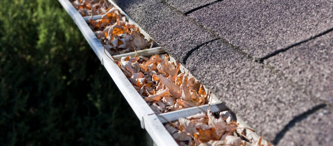 Roofing contractor in Elkridge | Cox Roofing